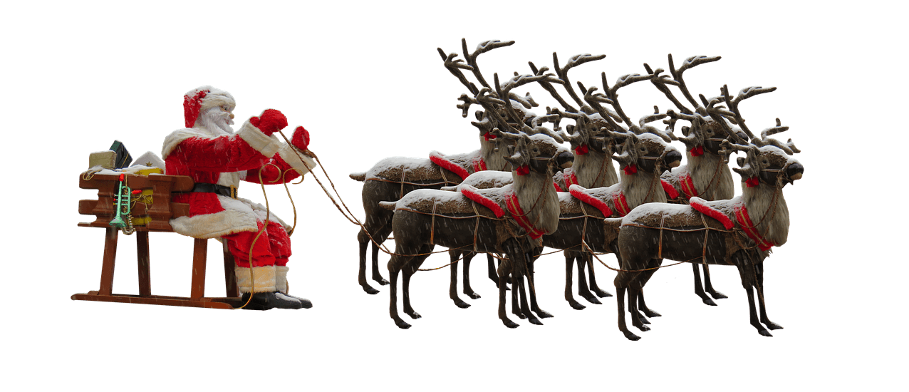 TRAMPOLIN PROFI: Lieferung pünktlich zu Weihnachten 2019