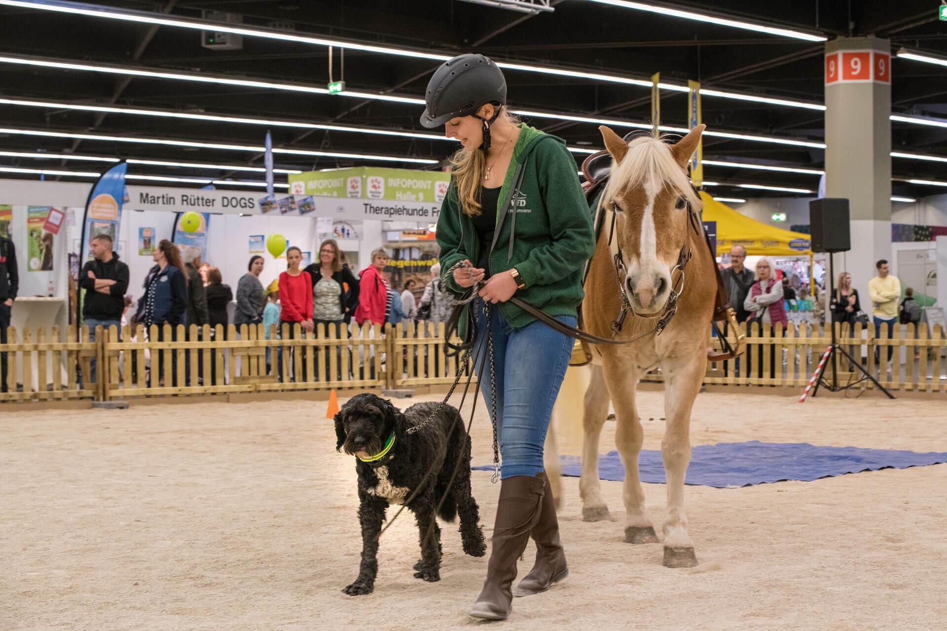 Heimtiermesse - Consumenta für Kids - besuchen Sie uns ebenfalls in Halle 7 A - trampolin-profi.de - Pressebilder/18HT_Hundewiese-mit-Pferd-und-Hund