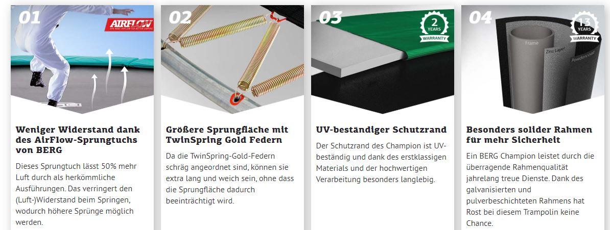 BERG Ultim Champion: großartig in jedem Bereich - kaufen auf gokart-profi.de